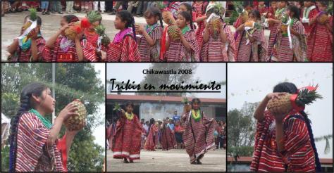 Mujer Flor del Huipil. Triquis. Triqui, Chicahuaxtla